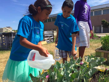 Two Vieau School students use recycled milk jugs to drench some thirsty plants on a sunny afternoon