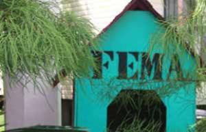FEMA built doghouses in New Orleans. There were dogs that received shelter before people. Photo by Peter Nakhid