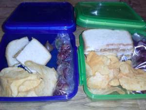 Lunch on the go, The fearless toddler and Leonardo da Vinci…