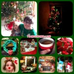 {Almost} Wordless Wednesday and It Looks Like Christmas!