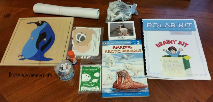 brainy kit review themadmommy..com