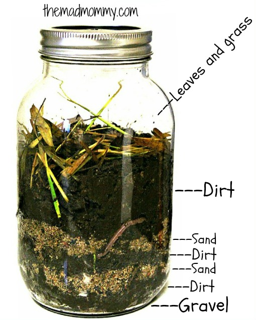 Here is a great way to observe worms and compost at the same time! Make your own wormery this spring!