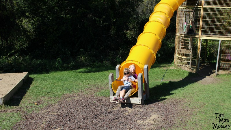 The corn slide at the Minnetonka Orchards!