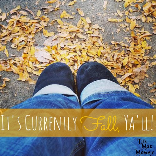 Hoodies, scarves and fake Ugg boots. Crisp mornings, changing colors and falling leaves. Halloween and my birthday! That's right, It's Currently Fall, Ya'll!