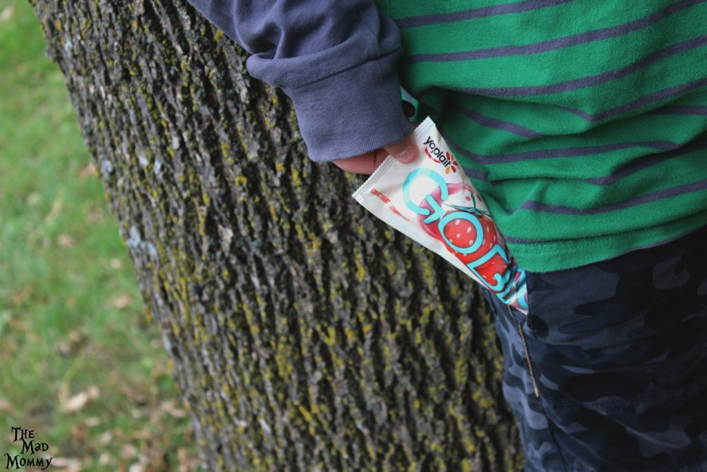 A boy that needs his snacks to Go Big or go home. A boy that needs a good source of calcium and a snack that contains real fruit. A boy that needs a snack designed with growing tweens and teens in mind. #YoplaitGoBig #Sponsored