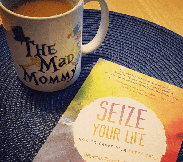 Seize Your Life by Jasmine Brett Stringer!