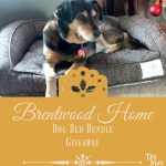 A Pup-tastic Brentwood Home Dog Bed Giveaway!