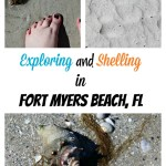 Exploring and Shelling in Fort Myers Beach, Florida!