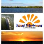 Once Upon A Sunset Dolphin Tour