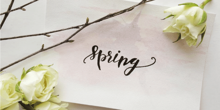 4 Spring Service Appointments to Make before the Weather Gets Too Warm