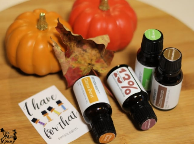 Simply Earth hand picks 4 essentials oils that go along with the season and the DIY projects/recipes. The October box includes Rosemary, Cinnamon, Citrus Burst and Energy!