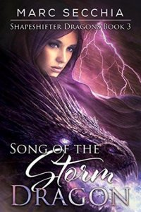 song-of-the-storm-dragon-by-marc-secchia