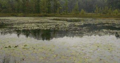 Lost Lake at Muskegon State Park, Michigan
