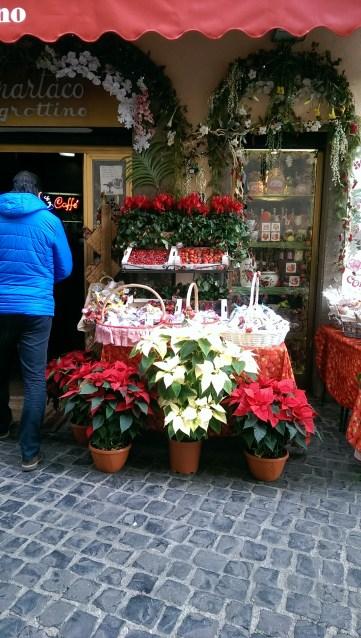 Dükkandan ayrıca çilek ve çiçekler de alabiliyorsunuz.