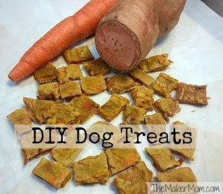 Making DIY dog treats from TheMakerMom.com