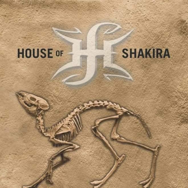 """Ny Video: House Of Shakira – """"Delusion""""."""