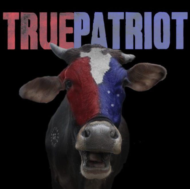 Ny Singel: Domesticated Riot – True Patriot