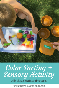Color Sorting and Sensory Activity