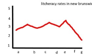 Litcheracy rates in New Brunswick at record low, acording to stastitics canada