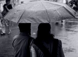Frederictonians to spend day telling each other how much we need this rain