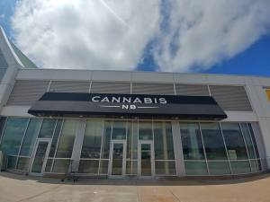 Cannabis NB continues to face stiff competition from Matt in apartment 6b