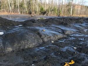 Last remaining NB snowbank is 47% road salt, 25% sand, 16% dogshit, 12% trash, 0% snow