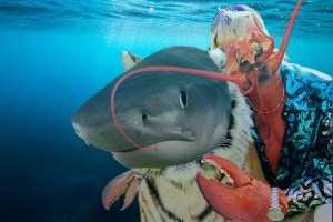 'That b*tch Carole the Basking shark killed her husband, fed him to the tiger sharks': Joe Exoskeleton
