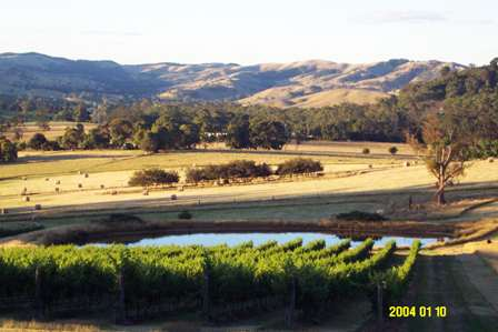 thv-03-valley2web.jpg