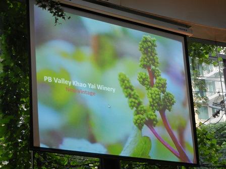Good bye Thailand - land of new latitude wines (3/3)