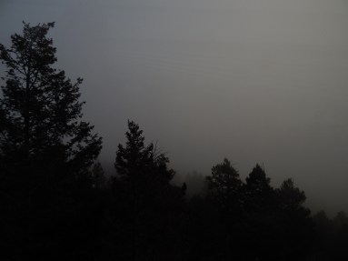 """""""Foggy Night"""""""
