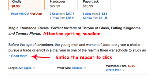 good online book description