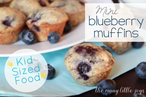 Super yummy mini blueberry muffins that are full of good-for-you ingredients and no butter! Great snack or breakfast for the kiddos in a kid-sized portion. Easy for mom, tasty for everyone.