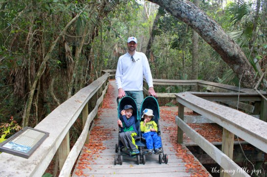Travel with Kids - The Florida Keys and The Everglades Mahogany Hammock Trail