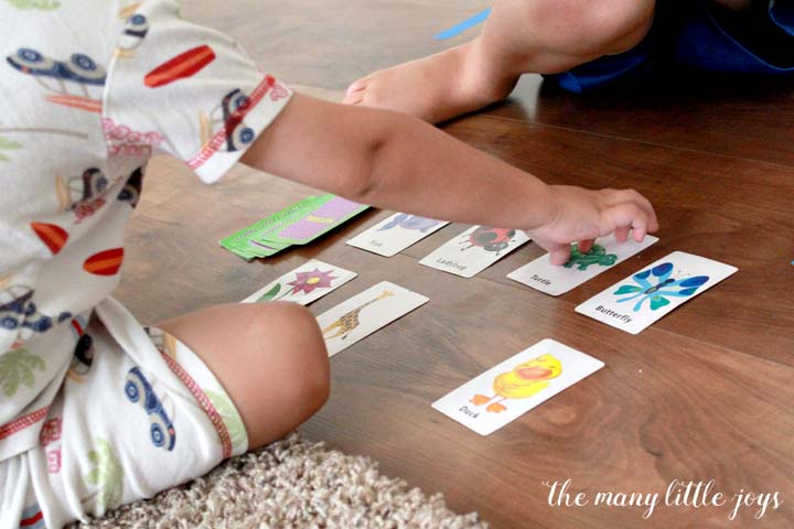 "This simplified version of the classic game of ""match"" (or memory) is a fun activity for young toddlers that will help to develop vocabulary and increase concentration."