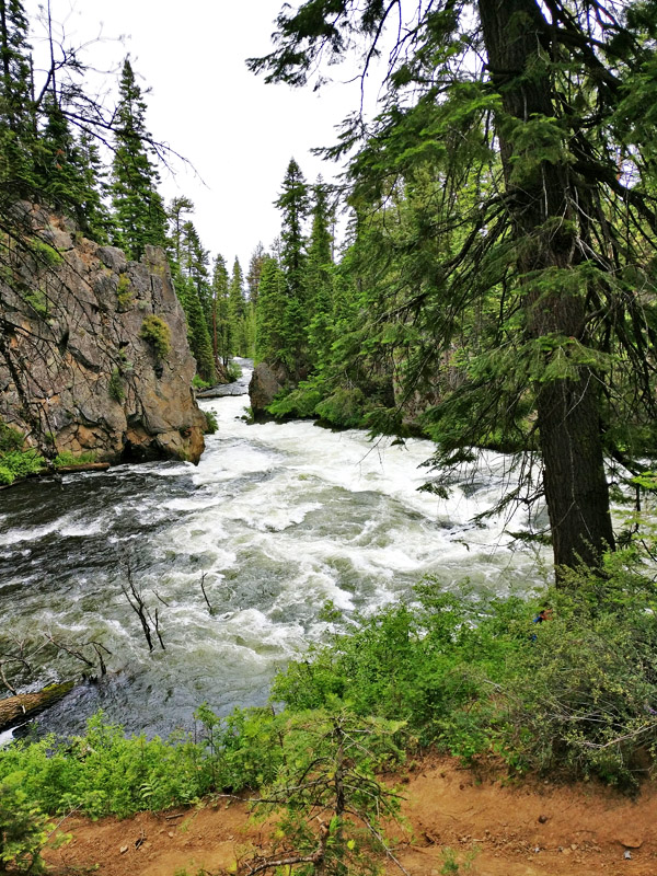 Sunriver, Oregon is a great place for a family reunion or vacation. Here are 10+ family-friendly activities to do in and around Sunriver!