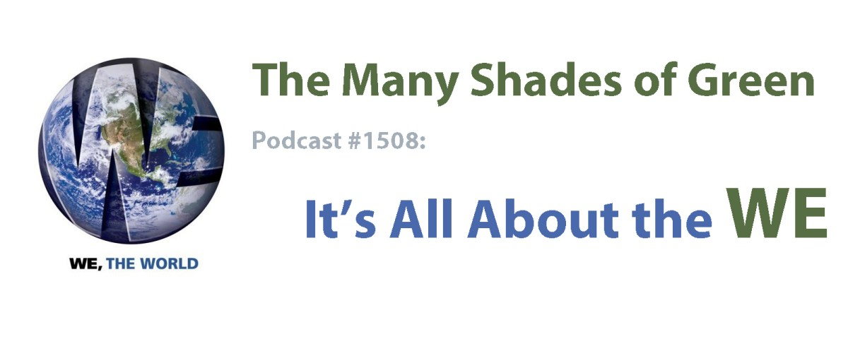 #1508: It's All About the WE