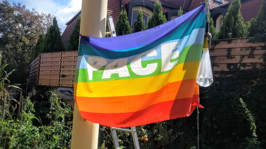 peace flag in the garden  {{grow food not lawns}}