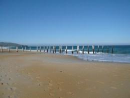 St Clair Beach, Dunedin, NZ