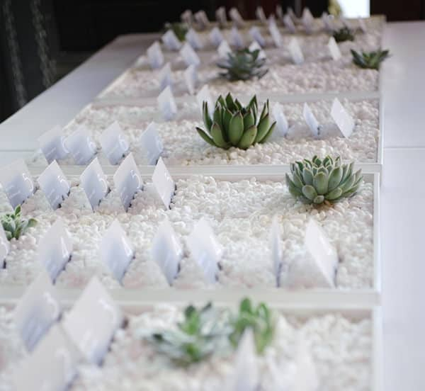 Succulent Themed Escort Cards