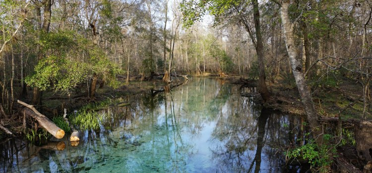 How An Engagement Gift Became Florida's Newest State Park