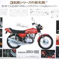 Kawasaki SS range.