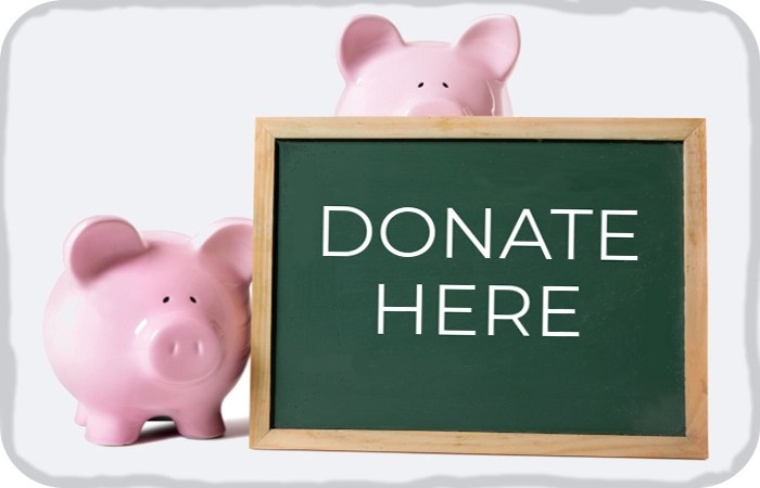 """piggy banks holding a """"Donate Here"""" sign"""
