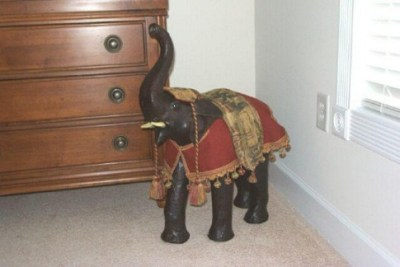 mbrdressedelephant
