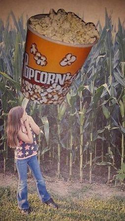 popcornfield