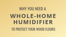 Why You Need a Home Humidifier