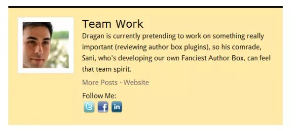WP About Author WordPress Plugin