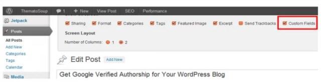 Enable Custom Fields in WordPress