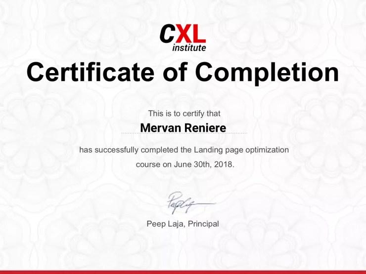 Landing Page Optimization CXL Course Review