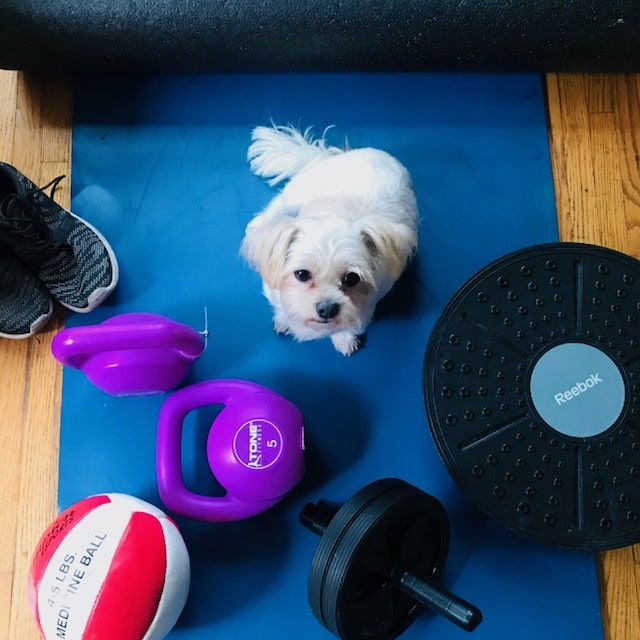 5 Reasons to Workout at Home