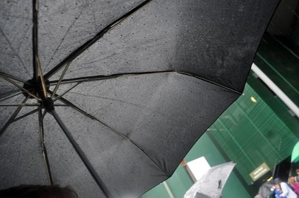 DSC_0122 Umbrella